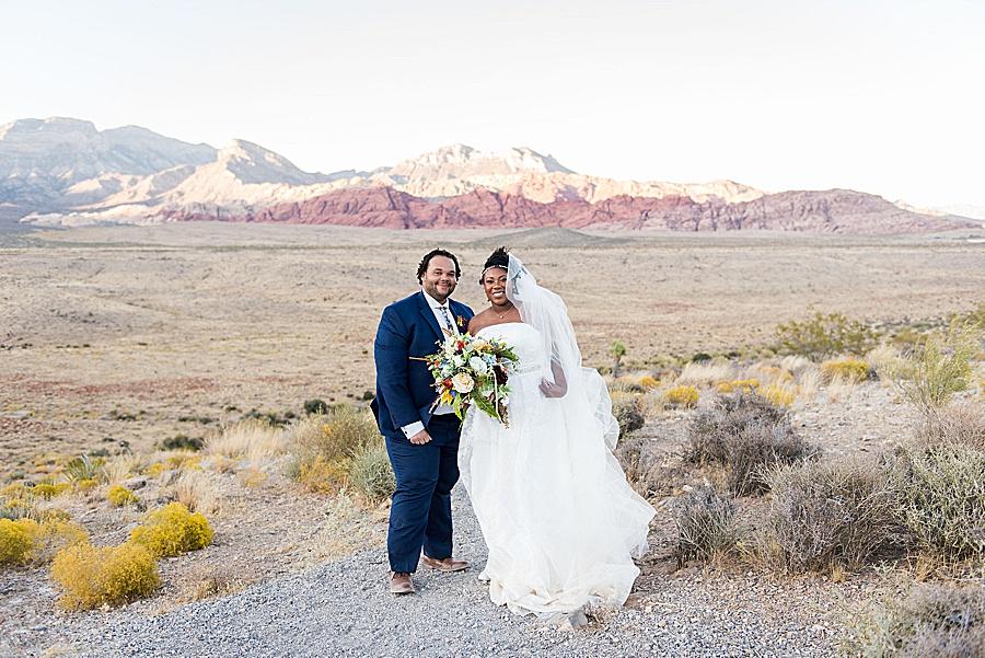 cactus-collective-wedding